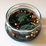 Garlic and Shiso Infused Soy Sauce